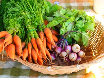 carrots and radishes from Bearfoot Farms