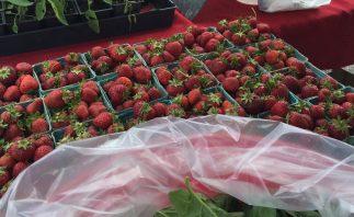 fresh_strawberries